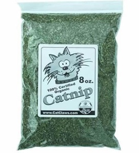Nepeta cataria (catnip) is to be banned in the UK under the new  Psychoactive Substances Bill.