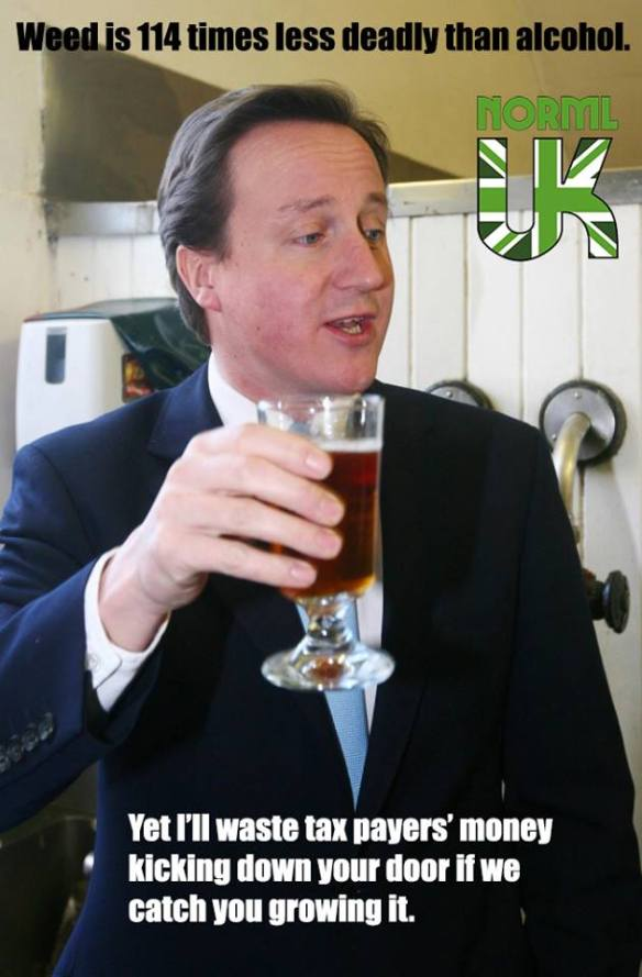 David Cameron drinking a beer which is more dangerous than pot.