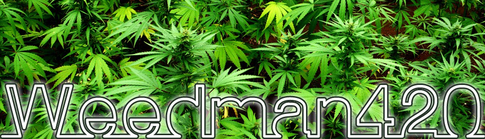 Weed Man 420